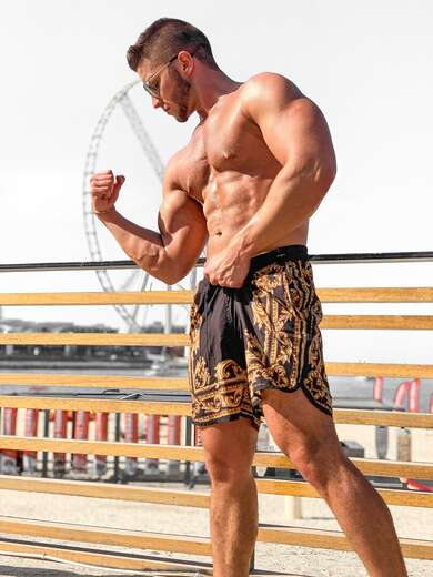 Alpha muscle god from the cold Notrh - Bi Male Escort in Dallas/Fort Worth - Main Photo